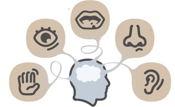 analisi sensoriale_ok